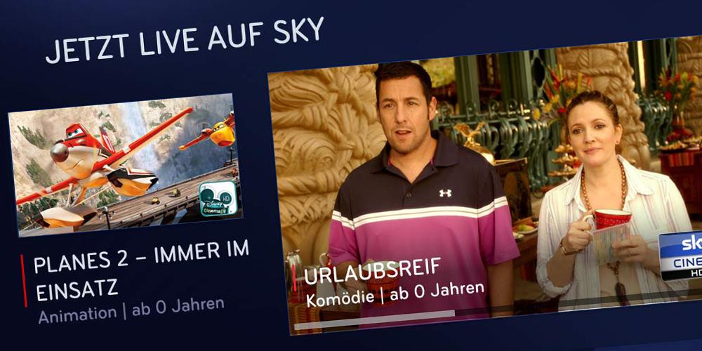 Sky Online Monatsticket